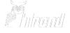Trend Web Studio